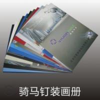 企业宣传册产品说明书 企业画册印刷东莞印刷厂 彩色样本宣传册